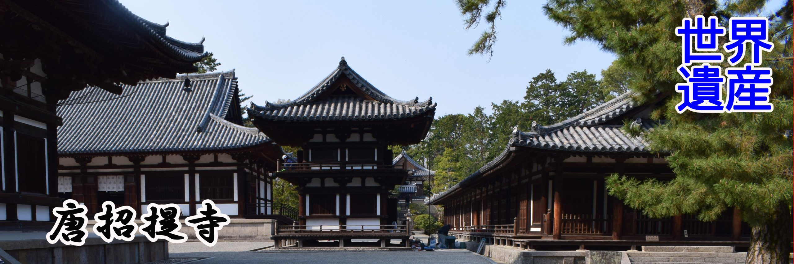 唐招提寺世界遺産1